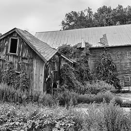 Twisted Barn by Steven Nelson