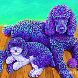 Two Colorful Poodles by Rebecca Wang