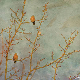 Two Little Robins by Dorothy Pinder