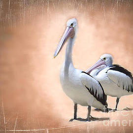 Two Pelicans by Trudee Hunter