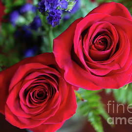 Two Roses by Diana Mary Sharpton