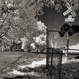 Two Tracks by Anthony M Davis
