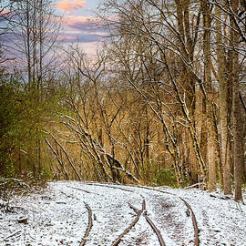 Two Tracks in Winter  by Debra and Dave Vanderlaan