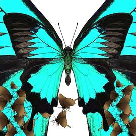 U is for Ulysses Butterfly by Joan Stratton