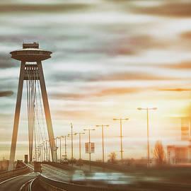 UFO Bridge Bratislava Slovakia  by Carol Japp