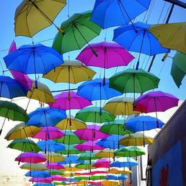 Umbrella Alley by Betsy Warner