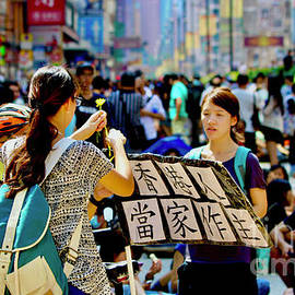 Umbrellas, #14 Hong Kong- The Beginning by Michael Martin