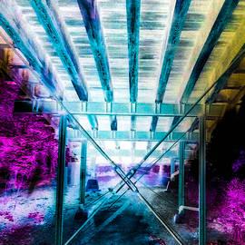 Under Camelback Bridge Constitution Trail 3 by Eileen Backman