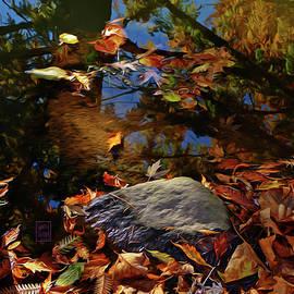 Under the Dawn Redwood by Garth Glazier