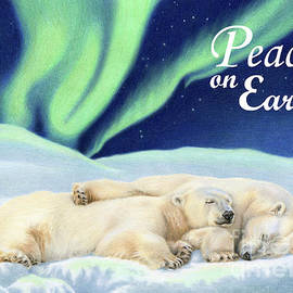 Under The Northern Lights- Peace on Earth Cards by Sarah Batalka