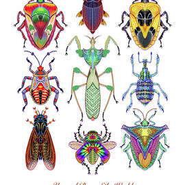 Unusual Bugs of the World by Tim Phelps