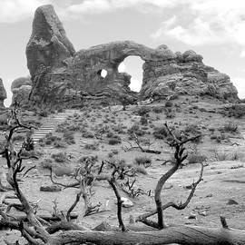 Utah Outback 37 by Mike McGlothlen