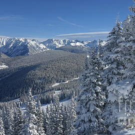 Vail View, Colorado by Marty Fancy