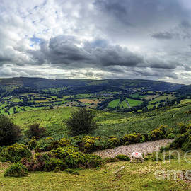 Vale of Llangollen by Ian Mitchell