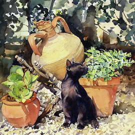 Valentine In My Garden by Margaret Merry