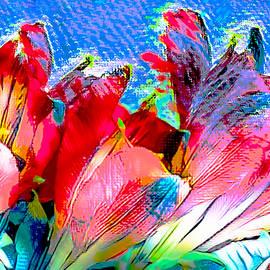 Bouquet by Ali Bailey