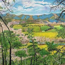 Valley Beauty by Nancy Rabe