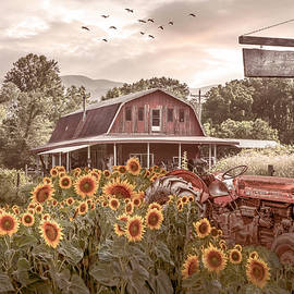 Valley Country Sunflower Farm by Debra and Dave Vanderlaan