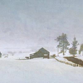 Valley Ranch In Winter, Colorado by R christopher Vest
