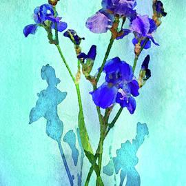 Vase of Purple Iris by Susan Maxwell Schmidt