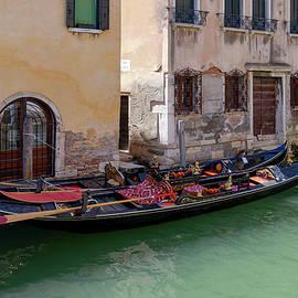 Venice Afternoon Siesta by Norma Brandsberg