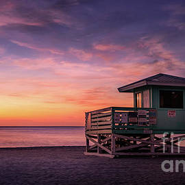 Venice Beach  Lifeguard Stand, Florida by Liesl Walsh