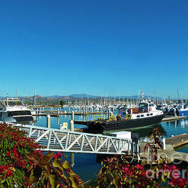 Ventura Harbor on a Splendid Sunny Day by Julieanne Case