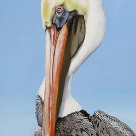 Vermilion Bay Pelican by Phyllis Beiser