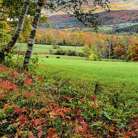 Vermont Morning on the Farm by Jeff Folger