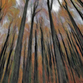 Verticality - Abstract by Daniel Beard