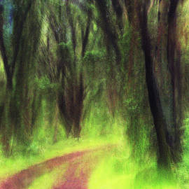 Verwunschener Wald by Angelika Vogel