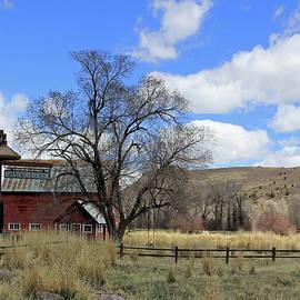 Victory Barn by Jennifer Robin