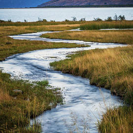 Viedma Creek by Inge Johnsson
