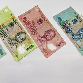 Vietnames money
