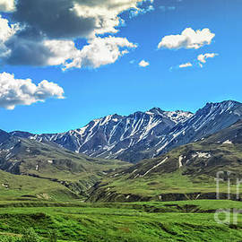 View From Eielson Center by Robert Bales