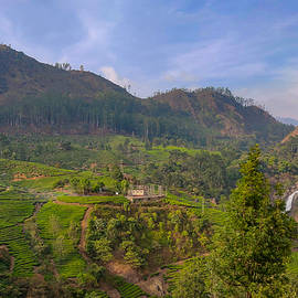 View from Munnar  by Yugal Joshi