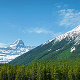 View From The Icefield Parkway by Rick Deacon