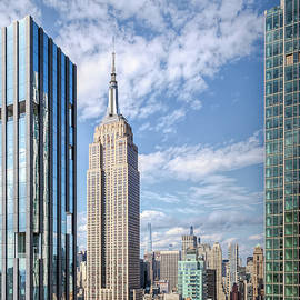 View Of The Empire State Building by Elvira Peretsman