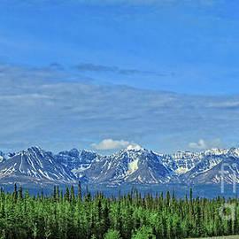 Viewing Kluane Range by Robert Bales