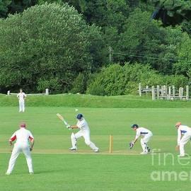 Village Cricket by Lesley Evered