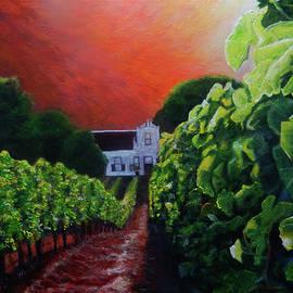 Vineyard Dawn by Michael Durst