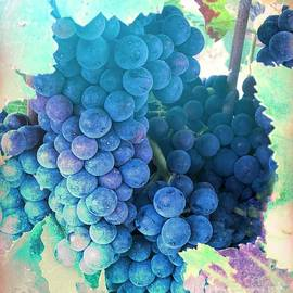 Vineyard Grapes by Luther Fine Art