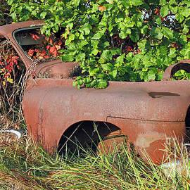 Vintage 1940s Sedan, Indiana by Steve Gass