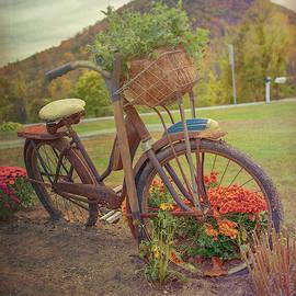 Vintage Bicycle Art by Joann Vitali