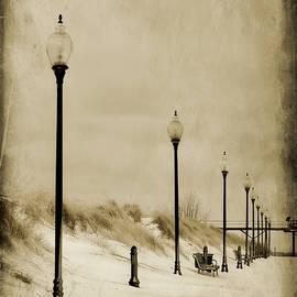 Vintage Dune's Winter by Carmen Macuga