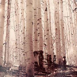 Vintage Forest by Scottyworld Artists