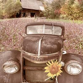 Vintage in the Country Wildflowers by Debra and Dave Vanderlaan