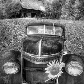 Vintage in the Wildflowers Black and White by Debra and Dave Vanderlaan