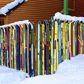 Vintage Ski Fence by Marty Fancy