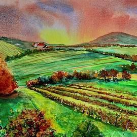 Vinyard  by Karen Harding